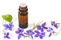 Remèdes de fleur de Bach des violettes sur le fond blanc Photo libre de droits
