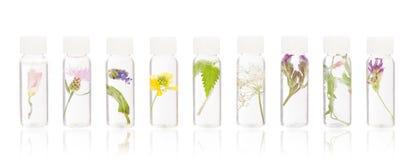 Remèdes naturels - FLORITERAPIA Bacha photo libre de droits