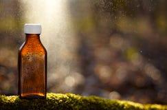 Remèdes naturels - huile, de fines herbes Images libres de droits