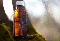 Remèdes naturels - médecines Images libres de droits