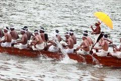 Remadores de uma equipe de barco da serpente Fotos de Stock Royalty Free