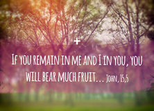 Remain in Me. Illustration of the Biblic phrase of John 15,5 Gospel: If you remain in Me, and I in you, you will bear much fruit Stock Photo