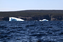 Remaining of big Icebergs reached the shore of Newfoundland Royalty Free Stock Photo