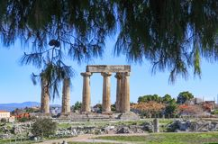 Remaining columns of the Temple of Apollo in ancient Corinth with mountains and village in background and view framed by pine tree royalty free stock photo