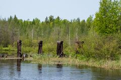 Remains of abandoned railroad bridge crossing Mosquito Brook in the Northwoods. Of Hayward, WI stock photos