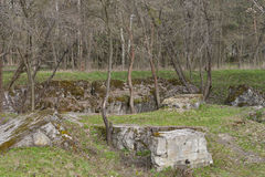 Remains of Adolf Hitler residence Werwolf Stock Photos