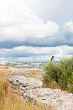 The remains of the ancient city of Chersonesus. Founded by the ancient Greeks. Hersones ruins, archaeological park Royalty Free Stock Photos