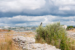 The remains of the ancient city of Chersonesus. Founded by the ancient Greeks. Hersones ruins, archaeological park Stock Image
