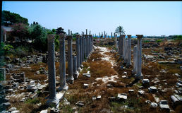 Remains of ancient columns, Al Mina excavation site,Tyre, Lebanon Stock Image