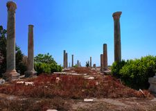 Remains of ancient columns at Al Mina excavation site at Tyre, Lebanon Royalty Free Stock Photo