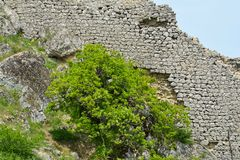 Remains of an ancient fortress Gala in Azerbaijan. Fortress Gala, 12th century, Azerbaijan national park Stock Image