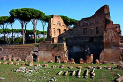 Remains of ancient Rome. Remains of ancient Roman building and Stadium of Domitian on the Palatine Hill in Rome, Italy Stock Image