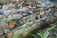 The remains of a campfire. The remains of the burnt-out fire on the grass Royalty Free Stock Photos