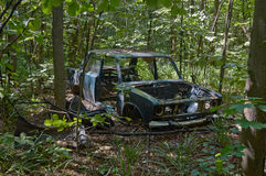 Remains of an  car in the forest. Stock Photos