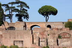 Ruins of the Circus Maximus in Rome, Italy Stock Photo