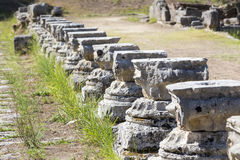 Remains of a Corinthian column in Olympia, Greece Royalty Free Stock Images