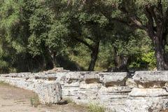 Remains of a Corinthian column in Olympia, Greece Stock Photos