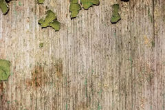 Remains of green cracked painting on wood surface Stock Images