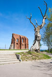 The remains of the historic church. In Trzesacz in Poland Royalty Free Stock Image