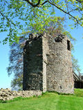 Remains of Kendal castle. With tree Stock Image