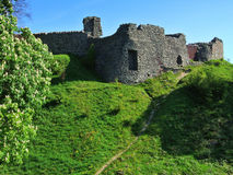 Remains of Kendal castle. And Horse Chestnut tree Stock Photos