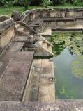 Polonnaruwa in Sri Lanka. The remains of the Kumara Pokuna the royal bathes in the ancient city Polonnaruwa in Sri Lanka Stock Photo