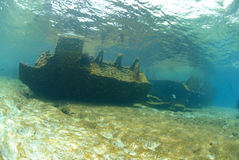 The Remains of the Lara shipwreck Stock Photos