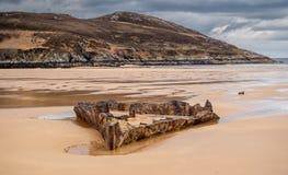 Free Remains Of Ship Wreck SS John Randolf At Torrisdale Bay Royalty Free Stock Photos - 148973048