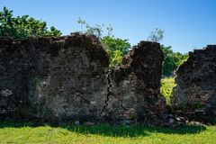 Devastated old brick wall with grass. Remains of the old brick wall. Behind are trees stock image