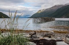 Remains of a pier at the beach with grass and seaweed surrounded by mountains stock photo