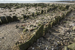 Remains of pier at Silver Sands beach in Milford, Connecticut. Stock Photo