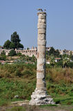 Temple Of Artemis remains, Selcuk, nr Ephesus, Turkey Stock Photos