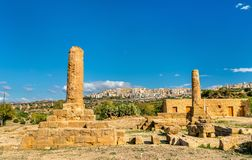 Remains of the Temple of Vulcan in the Valley of the Temples - Agrigento, Sicily. Remains of the Temple of Vulcano in the Valley of the Temples - Sicily, Italy royalty free stock photography