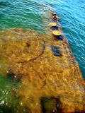 Remains of the U.S.S. Arizona in Pearl Harbor, HI royalty free stock images