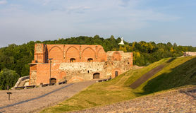 Remains of Vilnius castle Royalty Free Stock Photos