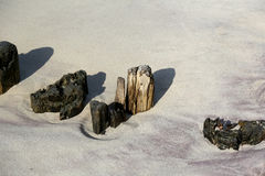 Remains of wooden breakwaters Royalty Free Stock Image