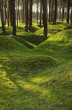Remains of WW1 trenches at Vimy Ridge, Belgium. Stock Photos