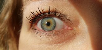 Remake blue eyes. A macro detail of Iride royalty free stock photos