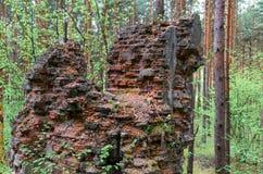 Remanente de edificios viejos y destruidos en bosque Fotos de archivo libres de regalías