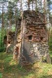 Remanente de edificios viejos y destruidos en bosque Imagen de archivo