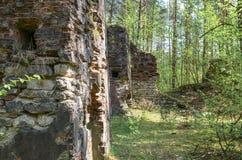 Remanente de edificios viejos y destruidos en bosque Fotografía de archivo libre de regalías