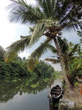Remansos de Kerala, la India Fotografía de archivo libre de regalías