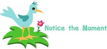 Remarquez l'oiseau bleu de moment illustration de vecteur