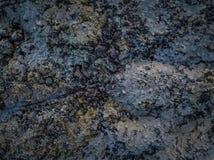 Remate abajo de vista de un campo de lava en Islandia cubrió en helada Fotos de archivo libres de regalías