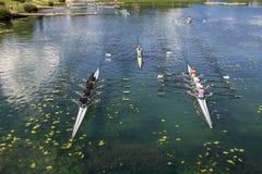 Rematura di formazione dei giovani sul lago Jarun immagine stock