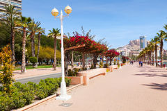 Remblai dans Alicante Photos stock