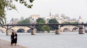 Remblai de la Seine à Paris photos stock