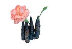 Remboursements in fine et une fleur Images stock