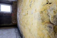 Remediation av tegelstenväggen royaltyfria foton