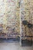 Remediation av tegelstenväggen arkivfoto